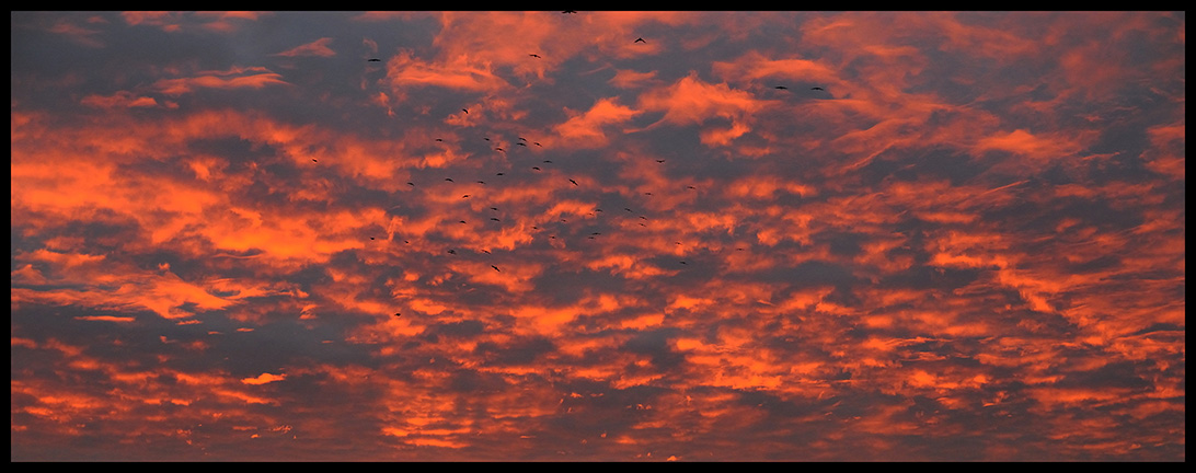 Aamun värit